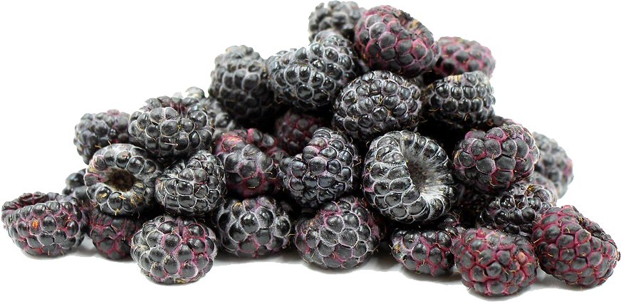 Black Raspberries File PNG Image