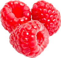 Rraspberry Png Image PNG Image