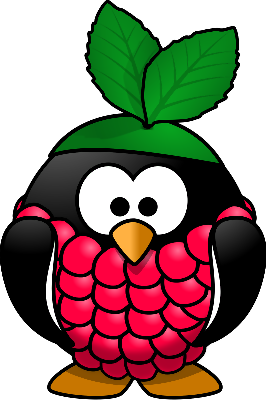 Raspberry Icons Computer Linux Party Pi Arch PNG Image