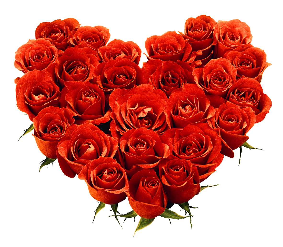 Bouquet Of Roses Png Image Picture Download PNG Image