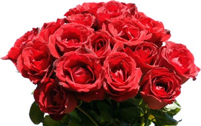 Rose Bunch PNG Image