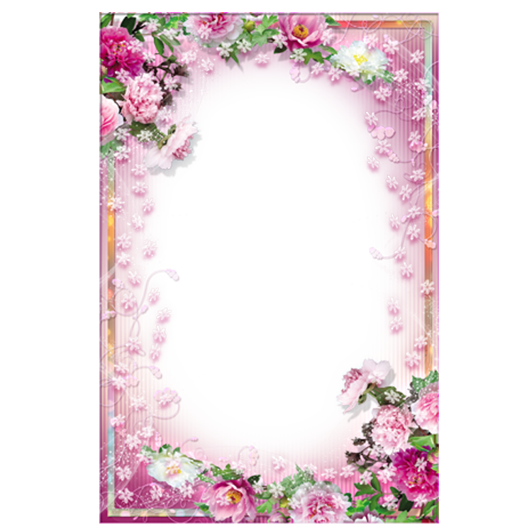 Pink Picture Frame Application Warm Floral Flowers PNG Image