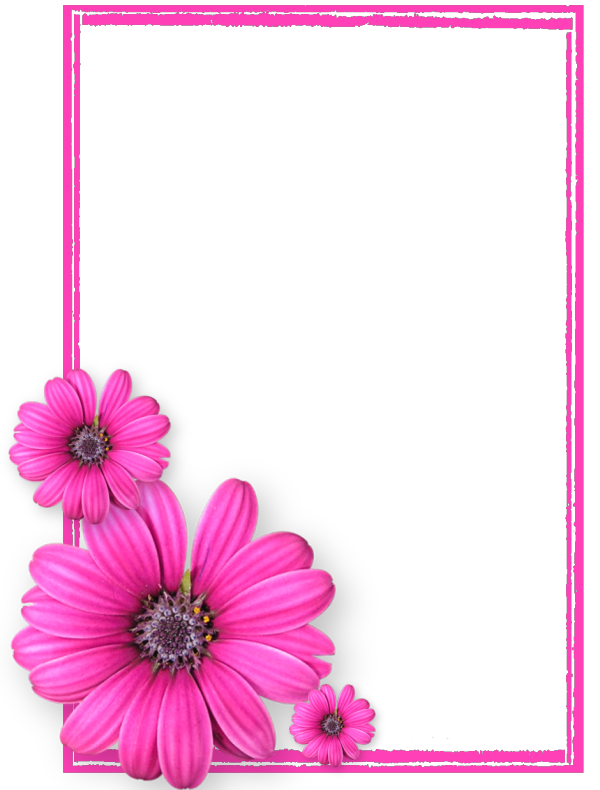 Pink Picture Flower Frame Photos8 Flowers PNG Image