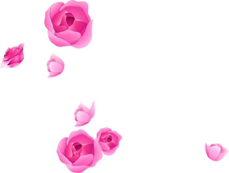 Photoshop Flower Adobe Portable Rose Graphics Border PNG Image