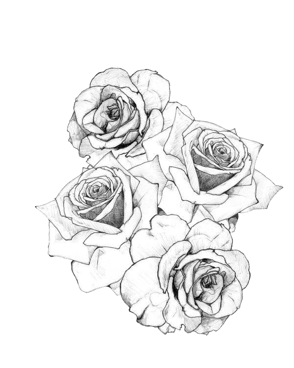 Tattoo Flash Rose Artist HQ Image Free PNG PNG Image