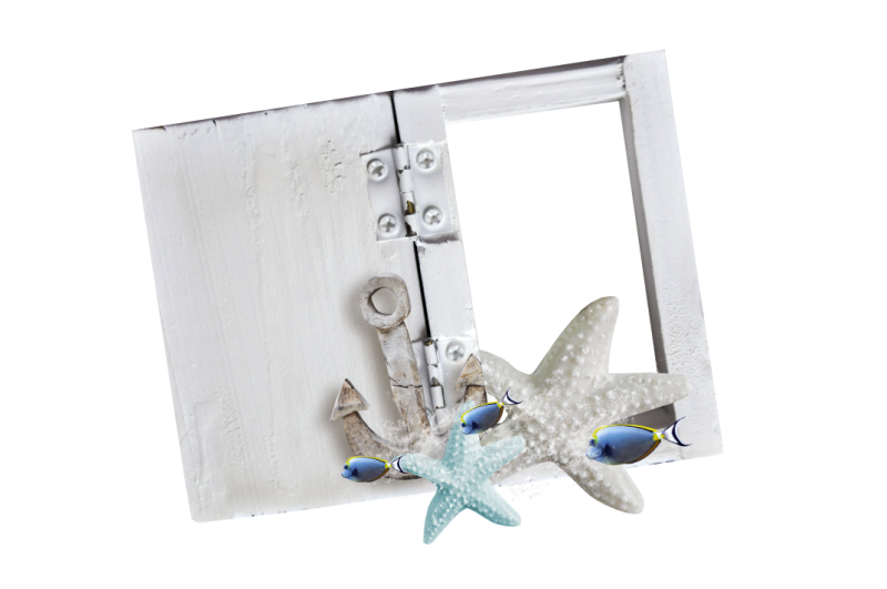 Picture Flower Frame Ocean Sea Wind PNG Image