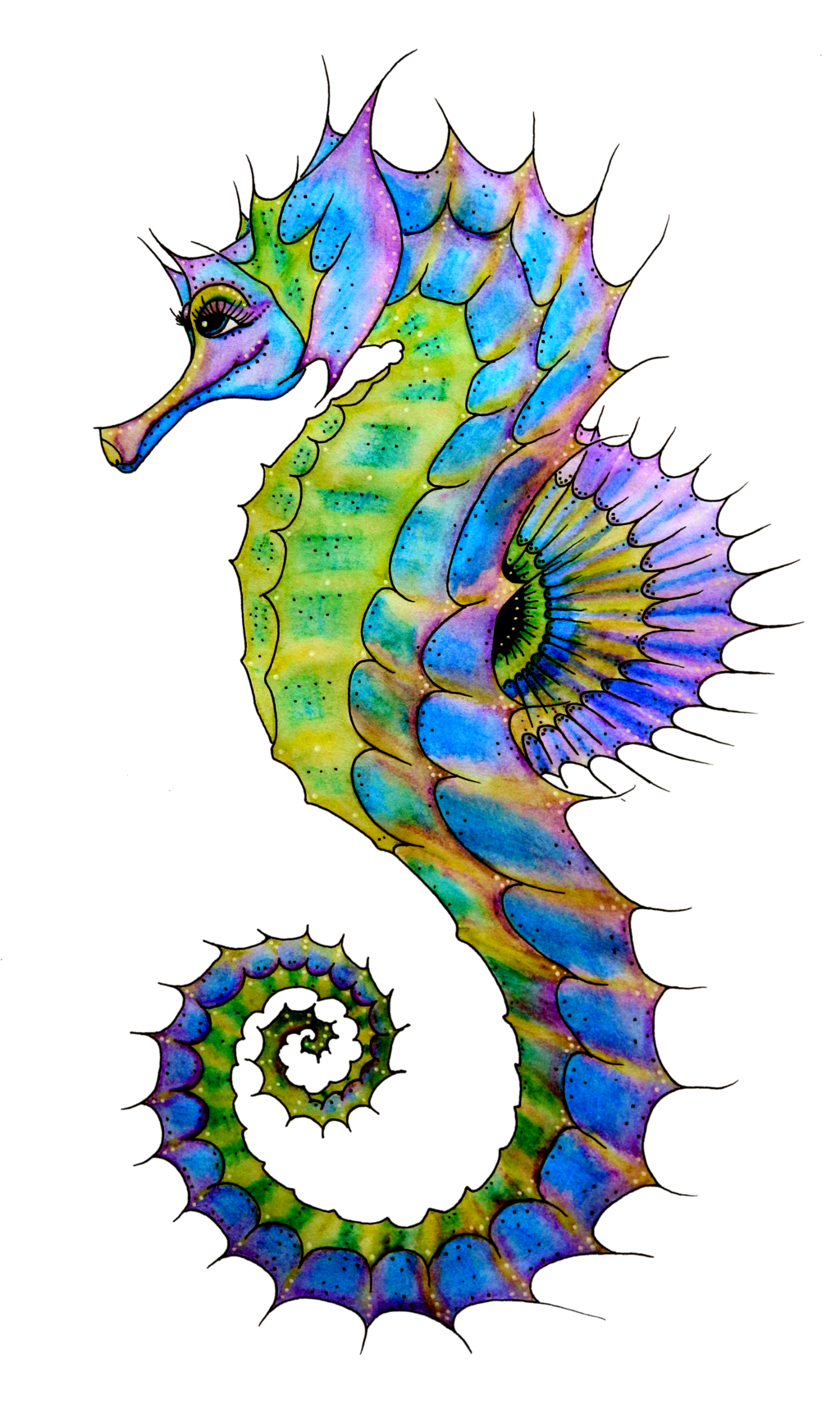 Seahorse Png Hd PNG Image