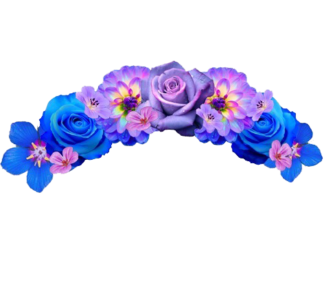 Snapchat Flower Crown Transparent Background PNG Image