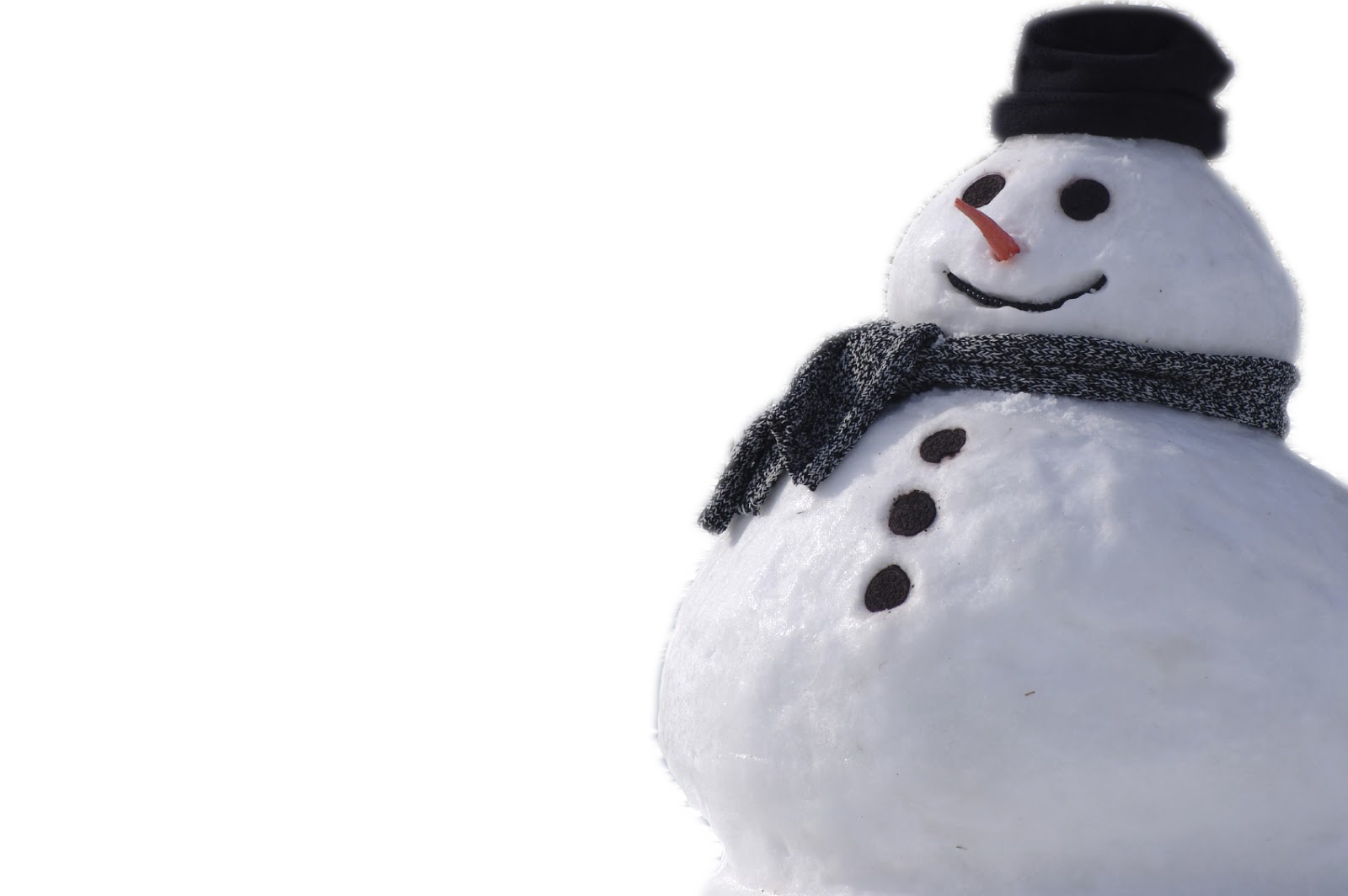 Real Snowman PNG Image