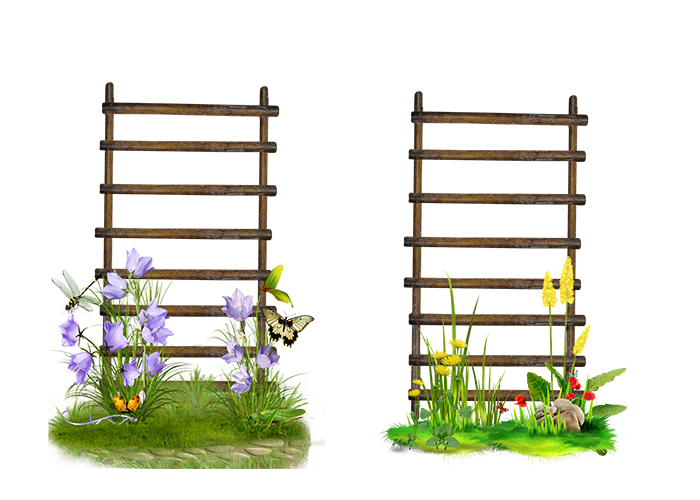 Ladder Frame Flower Stairs Garden PNG Image High Quality PNG Image