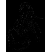 Tattoo Scorpion Png Image<B>素材格式</B>: PNG<B>素材尺寸</B>: 240x320<B>檔案大小</B>: 13.8KB<B>推薦人數</B>: 899