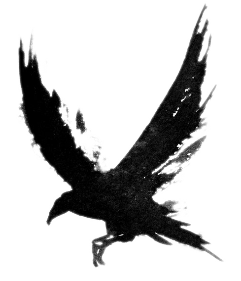 Tattoo Crow Flying Bird Common Drawing Raven PNG Image