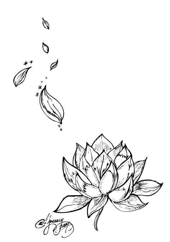 Tattoo Flower Nelumbo Nucifera Lotus Egyptian Drawing PNG Image