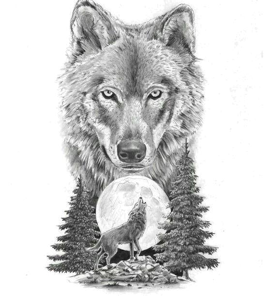 Download Gray Sketch Art Tattoo Artist Motion Wolf Hq Png Image Freepngimg