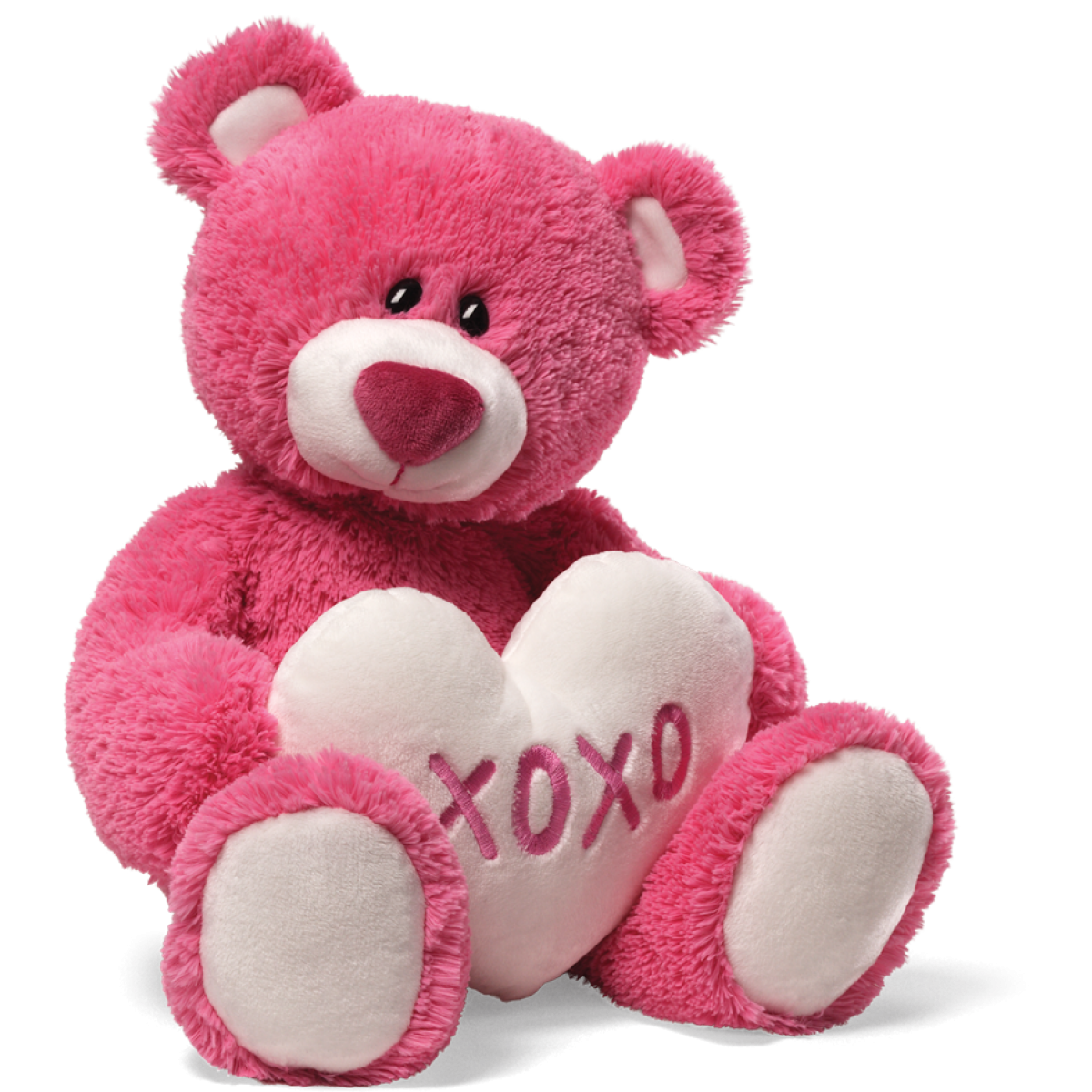 Teddy Bear Png Hd PNG Image