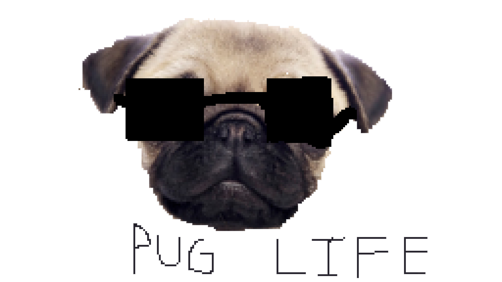 Pug Life Clipart PNG Image