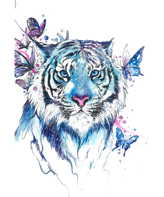 Tiger Butterfly Abziehtattoo Flash Drawing Free Transparent Image HD PNG Image