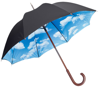 Umbrella Png Picture PNG Image