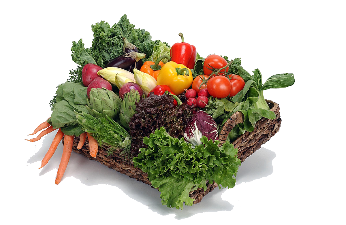 Vegetable Png File PNG Image