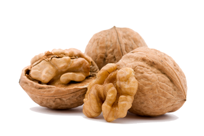 Walnut Png Pic PNG Image