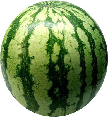 Watermelon Png Image Picture Download PNG Image
