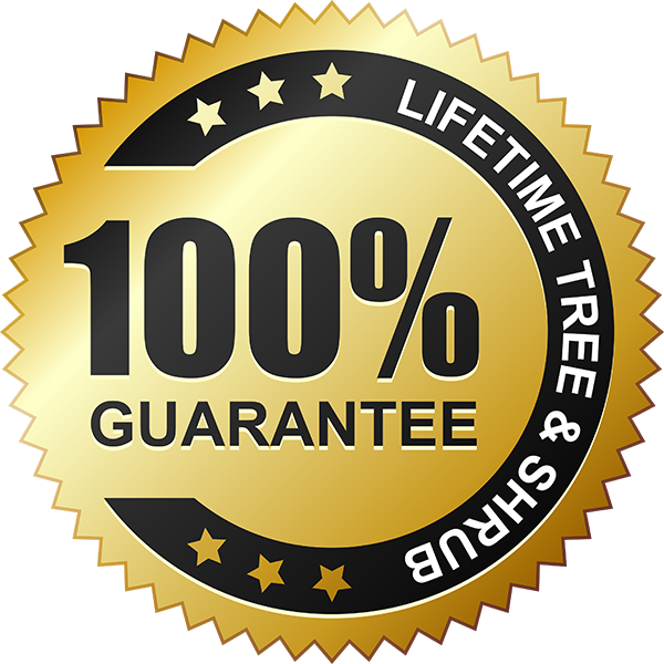 Guarantee Free Photo PNG PNG Image