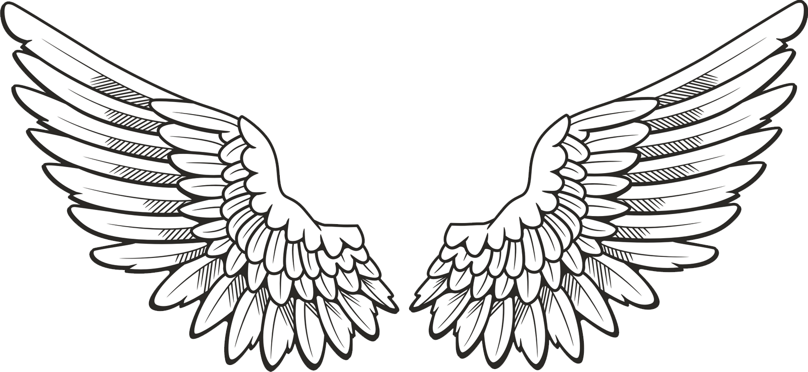 Angel Halo Wings Free Download PNG Image