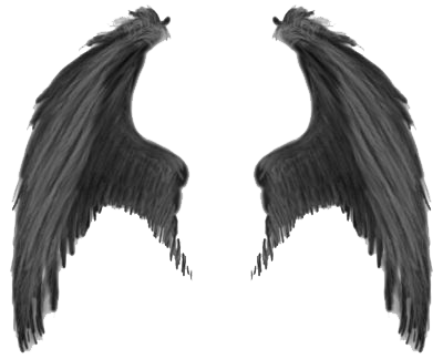 Wings Transparent Image PNG Image