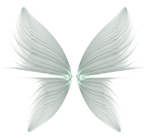 Wings Transparent Background PNG Image
