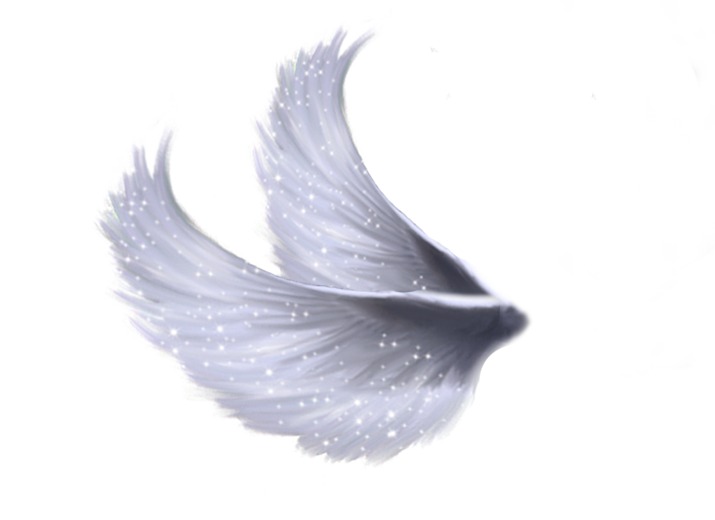 Wings File PNG Image