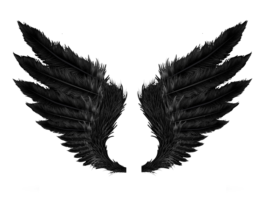 Wings Clipart PNG Image