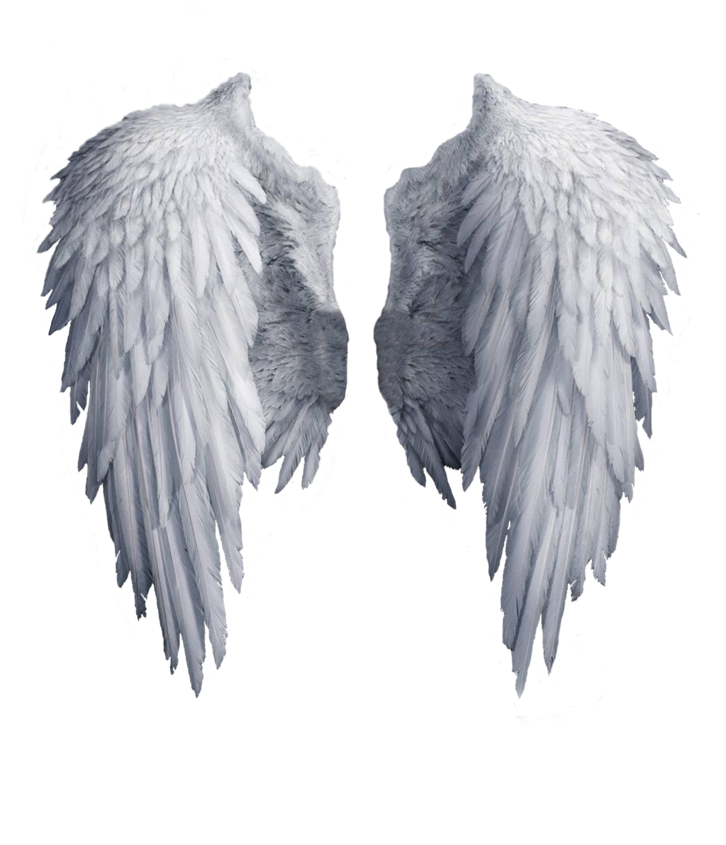 Wings Image PNG Image