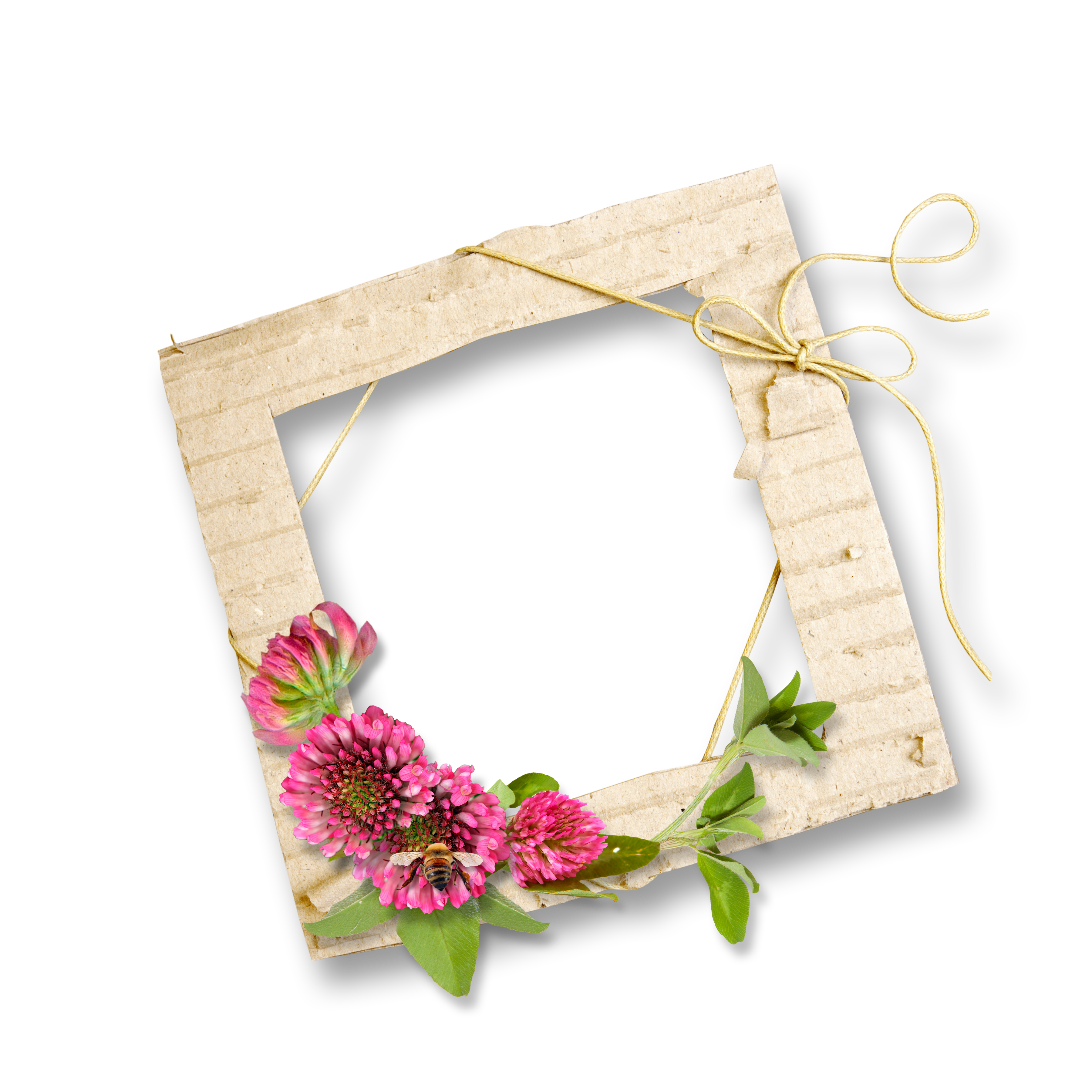 Picture Frame Wood Framing Free Transparent Image HD PNG Image