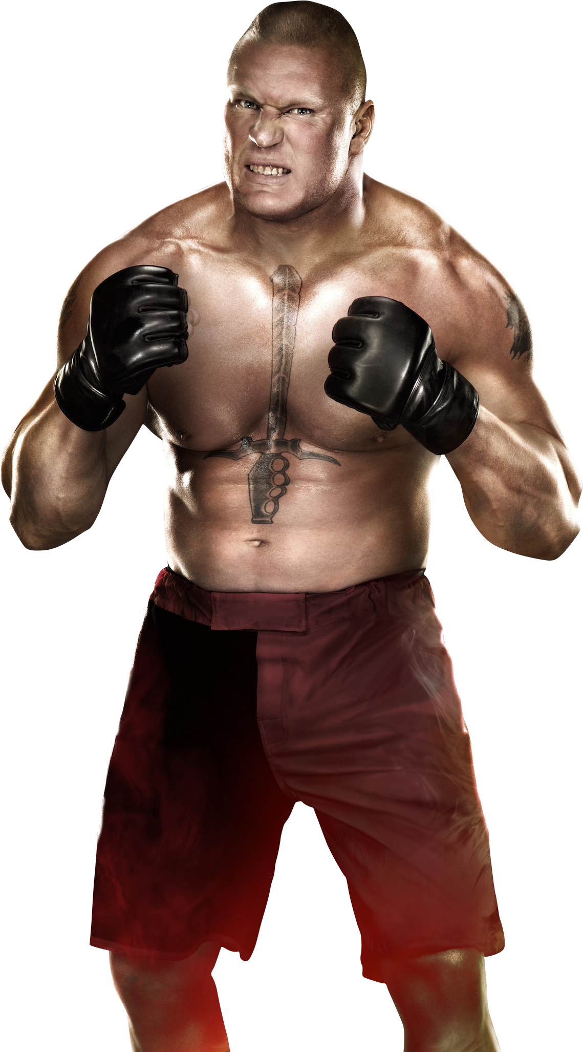 Brock Lesnar Photo PNG Image