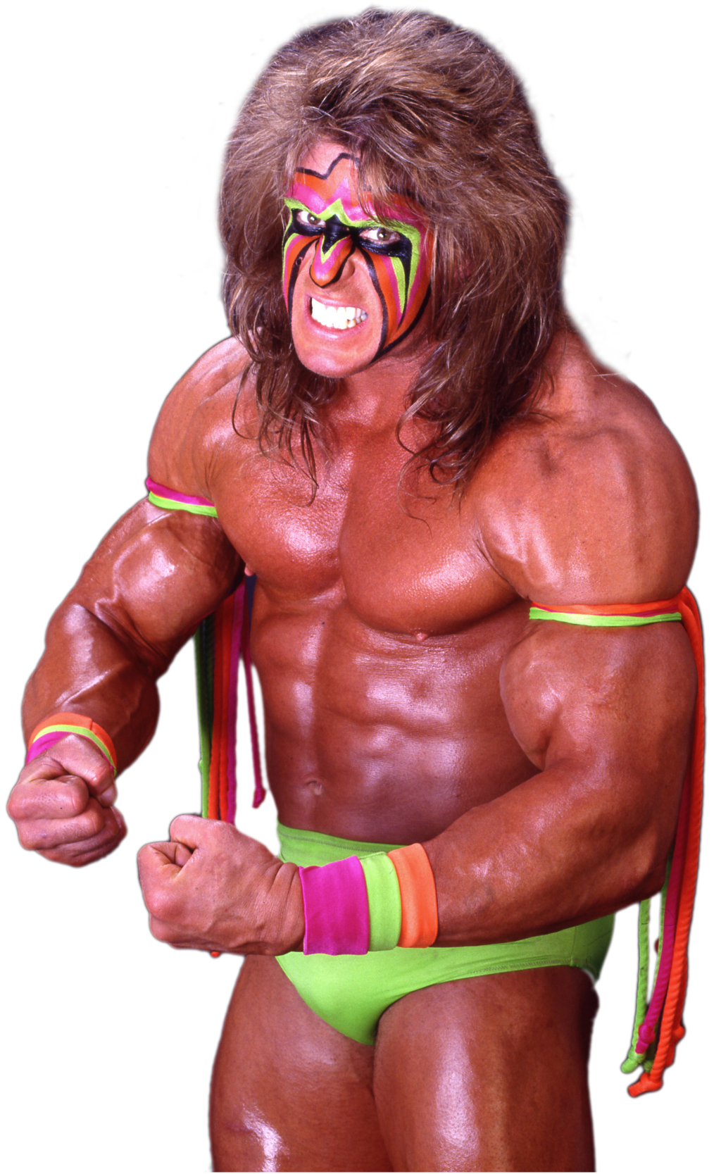 The Ultimate Warrior File PNG Image