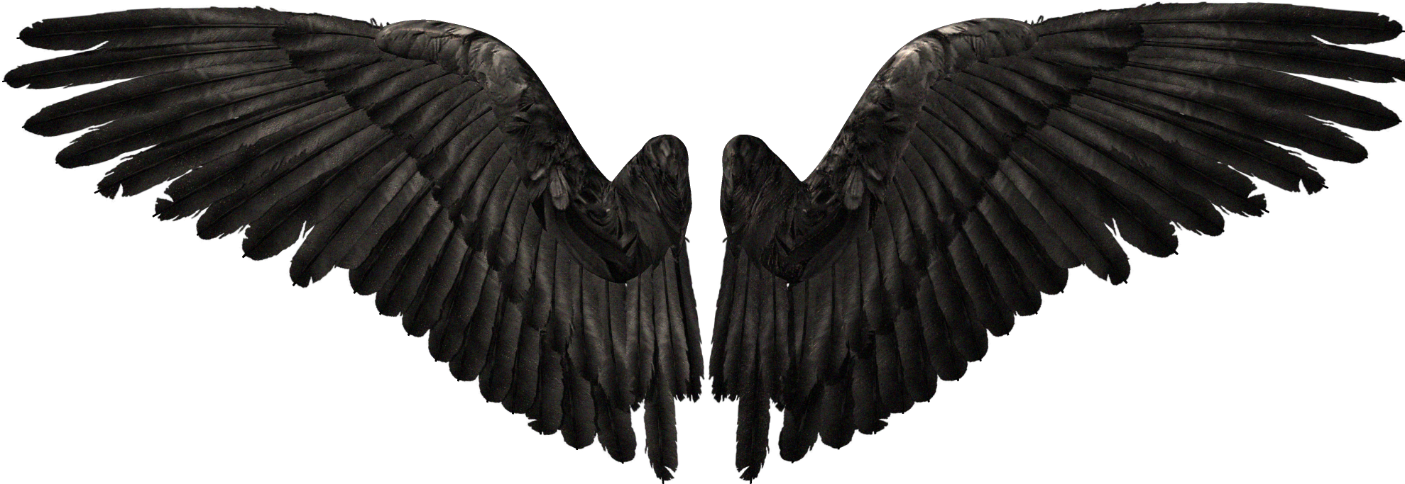 Devil Youtube Wings Angel Free Download PNG HD PNG Image